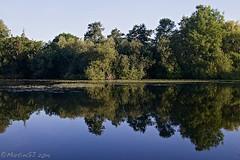Kooikerplas (MartinGJ56) Tags: nature water landscape bomen utrecht nederland boom ned landschap houten spiegeling waterplas reflectiereflection