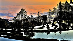 Sunrise in Yuanyang China. (flowerikka) Tags: china trees mountains water clouds sunrise riceterraces yuanyang