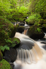 Recomposition (M Hillier) Tags: park wood bridge summer green water river waterfall wooden stream long exposure district wildlife sheffield peak falls foliage national valley trust gorge brook lush cascade peaty wyming