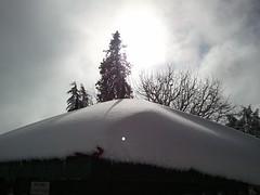 (anonymusneo) Tags: shimla newyear now snowfall