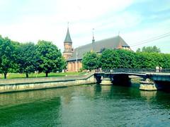 Kaliningrad Cathedral!
