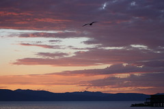 Lake Tahoe Sunset (dlofink) Tags: sunset cloud sun lake color water clouds tahoe rays