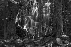 Guarded Dreams (Joshua Johnston Photography) Tags: trees light water oregon zeiss waterfall mthood ramonafalls canon6d planar5014ze zeisszeplanart50mm joshuajohnston