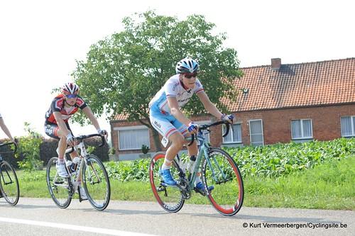 Geel Oosterlo  (181)