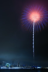20140720195320_0391_ILCA-77M2 (iLoveLilyD) Tags: longexposure nightshot fireworks sony yokohama za kanagawa 2014 carlzeiss apsc minoltaamount sal2470z variosonnar247028za ilovelilyd ilca77m2 77ii