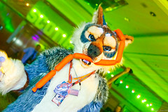 _MG_0722 (Tiger_Icecold) Tags: confuzzled cfz2016 cf2016 furcon furry convention fursuit birmingham party deaddog ddp deaddogparty