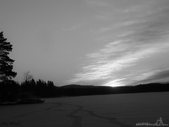Here comes the sun (jondewi52) Tags: black blackandwhite clouds cloud dawn frozen forest landscape monochrome morning nature outdoor outdoors river snow sunrise sky sun tree trees winter white wood woods