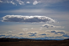 gone with the wind (~ Mariana ~) Tags: ab canada foothills rockymountains calgary landscape clouds sky light nikon ~mariana~ nature marculescueugendreamsoflightportal outstandingromanianphotographers