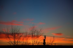 magenta blobs (viewsfromthe519) Tags: sunrise dawn morning sky skyscape clouds orange golden yellow magenta pink purple blue moody stthomas ontario canada silhouette trees