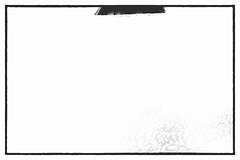 Nude Behind Veil - April 1, 2017 (muzza_buck) Tags: aprilfool humor humour