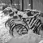 Uppsala, January 7, 2016 thumbnail