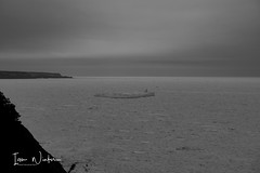 Middle Cove Ice-17-3 (Ian L Winter) Tags: nature newfoundland driftice ice middlecove logybaymiddlecoveoutercove newfoundlandandlabrador canada ca