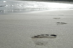 Robe South Australia - Footsteps in the sand... (Parrish Fatchen) Tags: beach sand limestonecoast robesouthaustralia southaustralia
