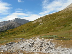 Alberta  Alpines (Mr. Happy Face - Peace :)) Tags: albertabound art2017 canada150years nature rockies hiking archives mountains wilderness canadaparks yyc environment sky cloud landscape