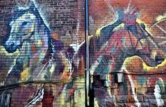 Mural, Milky Way, Toronto, ON (Snuffy) Tags: murals milkyway toronto ontario canada streetartgallery autofocus level1photographyforrecreation