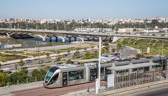 Tram  Linie 2 Rabat - Sale (LTE 1216) Tags: rabat sale marokko morocco tram strasenbahn alstom hassanii tramway de rabatsalé citadis