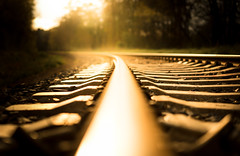Follow (--Conrad-N--) Tags: low perspective reflection rails railway sony sunset a7rm2 steel forest