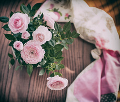 Rosas rosas (Monica Fiuza) Tags: rosas roses pink rosa cenital flores flowers rosal