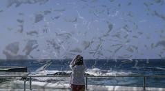 Aquel día el viento peino su corazón. #canarias #tenerife #mar #sea #human #blue #relax #airelibre #outdoor #girl #landscape #naturaleza #paisaje (teresayanesfoto&gráfica) Tags: landscape blue relax paisaje outdoor mar tenerife sea canarias airelibre naturaleza girl human