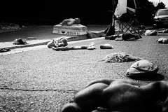 love? (jeff_tidwell) Tags: street streetphotography streetphoto candid blackandwhite bw plannedparenthood love protest dolls babies marchforlife