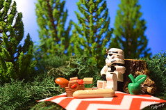 An encounter with nature and its food (RagingPhotography) Tags: lego star wars stormtrooper nature outdoor outside grass trees artificial picnic food basket encounter ragingphotography
