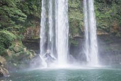 Palenque Misol Ha Falls-8