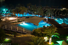 Night at the pool... (EHA73) Tags: noctiluxm109550asph leica leicamp typ240 nightphotography pool swimmingpool night trees palmtrees beach