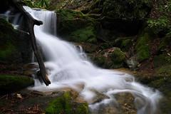 Upper Mill Creek Falls (Tim Devine Photography) Tags: sonya7rii ilce7rm2 smcpk28mmf35 smcpentax28mmf35k uppermillcreekfalls millcreek waterfall masondixontrail lock12 yorkcounty pennsylvania