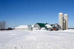 Bâtiments de ferme durant l'hiver à Rimouski. (Gaetan L) Tags: baslaurent gaspésie rimouski nikond7000 route132 provincedequébec fleuvestlaurent bâtimentdeferme farmbuilding farm ferme hiver winter silo