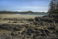 From Frank Island looking south on Chesterman Beach at low tide. Pacific Rim - Vancouver Island, BC (Freshairphotography) Tags: frankisland pacificocean pacificrim vancouverisland westcoast beautifulbc beach chestermanbeach tofino tourism coast