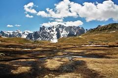 Vue panoramique du massif des Cerces depuis une zone humide d'altitude: le Lau. Névache, vallée de la Clarée, juin 2010. (christiandevlieger) Tags: tourbière zonehumide le lau névache clarée cerces