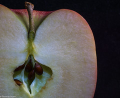 MM_17.4.2017_Seeds_Apple (Th.Duerr) Tags: macromonday seeds apple tabletop sony e30mmf35macro food fruit healthy crosssection