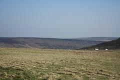 Hills (My photos live here) Tags: stanage edge derbyshire england high peak district national park midlands canon eos 1000d hathersage granite escarpment