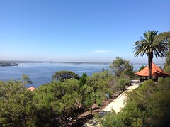 Swan River (sander_sloots) Tags: swan river perth view tree kings park palm bomen rivier uitzicht
