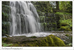 Roche Abbey Waterfall (Paul Simpson Photography) Tags: paulsimpsonphotography waterfall water sonya77 nature rocheabbey southyorkshire yorkshire naturalworld longexposure april2017 moss rocks flowingwater spring