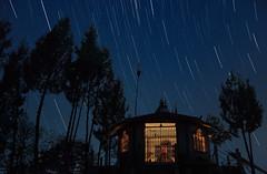 A night at Mankhim Top, Aritar, Sikkim (Shakyasom Majumder) Tags: stars startrails night nightphotography temple mankhimtop trees nature naturephotography naturalbeauty landscape landscapephotography nikon nikond500 afsnikkor18105vr sikkimtourism sikkim sikkimhimalayas eastsikkim aritar northeastindia