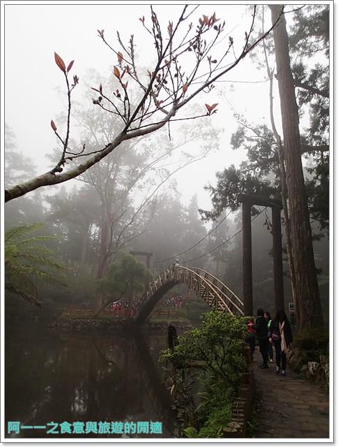 南投溪頭自然教育園區台大image029