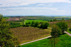 _DSC3148 (Marcel Musil) Tags: republika vinohrady valtice esk stechy kolonda valtic letohrdku