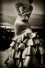 flamenco (Aidan_CK) Tags: flamenco