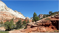 Sculptured Rock, East Zion N.P., Hwy 9 4-30-14m (inkknife_2000 (7 million views +)) Tags: usa landscapes utah zionnationalpark nationalparks scenicdrives geologicformations redrockformations dgrahamphoto windcarvedsandstone utahhwy9 ziontomtcarmelroad
