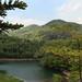 Korea_Nature_in_Gyeonggido_15