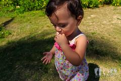 20140510-IMG_2553 (kiapolo) Tags: kualoa 2014 kualoabeach may2014 hklea