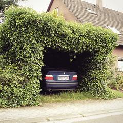 Natural Carport by David Foster Nass -