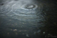 rainy day world (Jon Downs) Tags: blue brown color colour green water colors rain canon downs puddle eos jon colours 5d jondowns