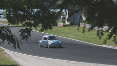 Volkswagen Beetle (zpapa) Tags: auto classic car mobile vw racetrack canon volkswagen eos classiccar hungary budapest beetle automotive vehicle tamron 70200 hungaroring 6d 70200mm automobil kocsi worldcars