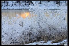 nEO_IMG_DP1U8630 (c0466art) Tags: city trip morning travel trees winter light white lake snow cold reflection ice water beautiful weather sunrise wonderful season landscape photo amazing image north chinese east special area 2014 1dx  c0466art scenerycanon