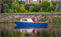 (Ady Negrean) Tags: city uk cruise summer england landscape boat minolta unitedkingdom sony united may meadows cruising chester dee slt navigating a57