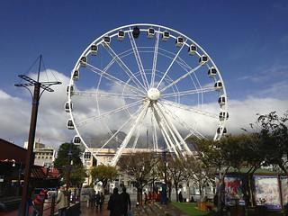 Cape Town Luxury Safari 4