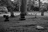 Old Union Cemetery in Vertrees (picsbyrita) Tags: cemetery tombstone crosses ansh scavenger1 anothermemberphoto