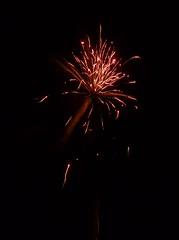 Bromeliad Flame (LA Stanton) Tags: orange fireworks firework bonfire bonfirenight